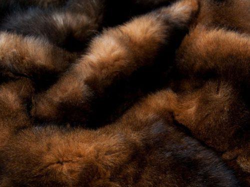 Wool, Fur & Leather